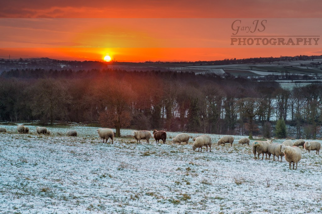 Bright Red Sunrise - Lower Denby